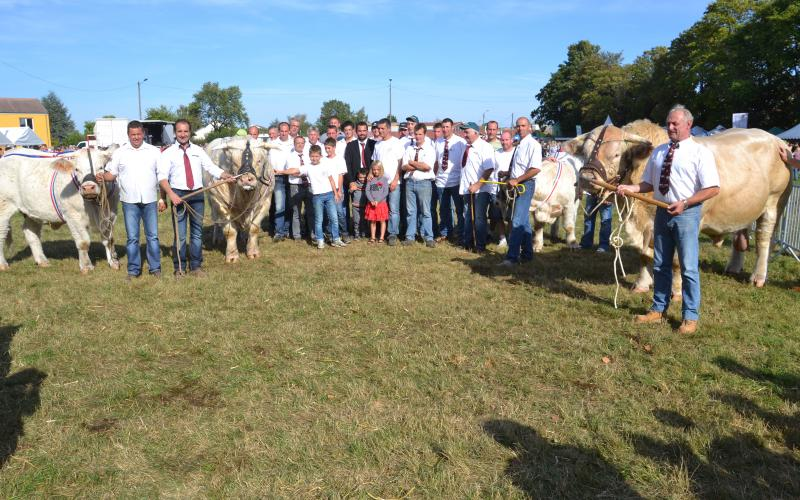 Photo de groupe Charolais © E.D.
