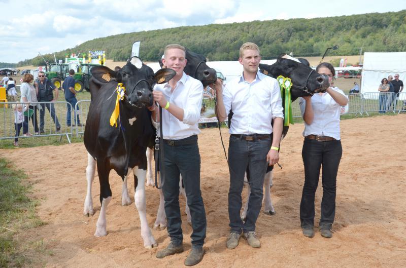 Concours Holsteins © T.M.