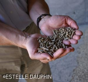 Agropellets destinés à l'aliment animal.